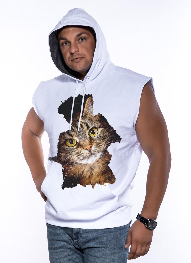 Kot Paczacz - Tulzo