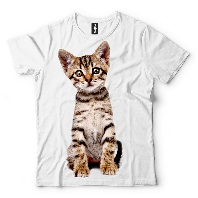 Śmieszny Kotek - Tulzo