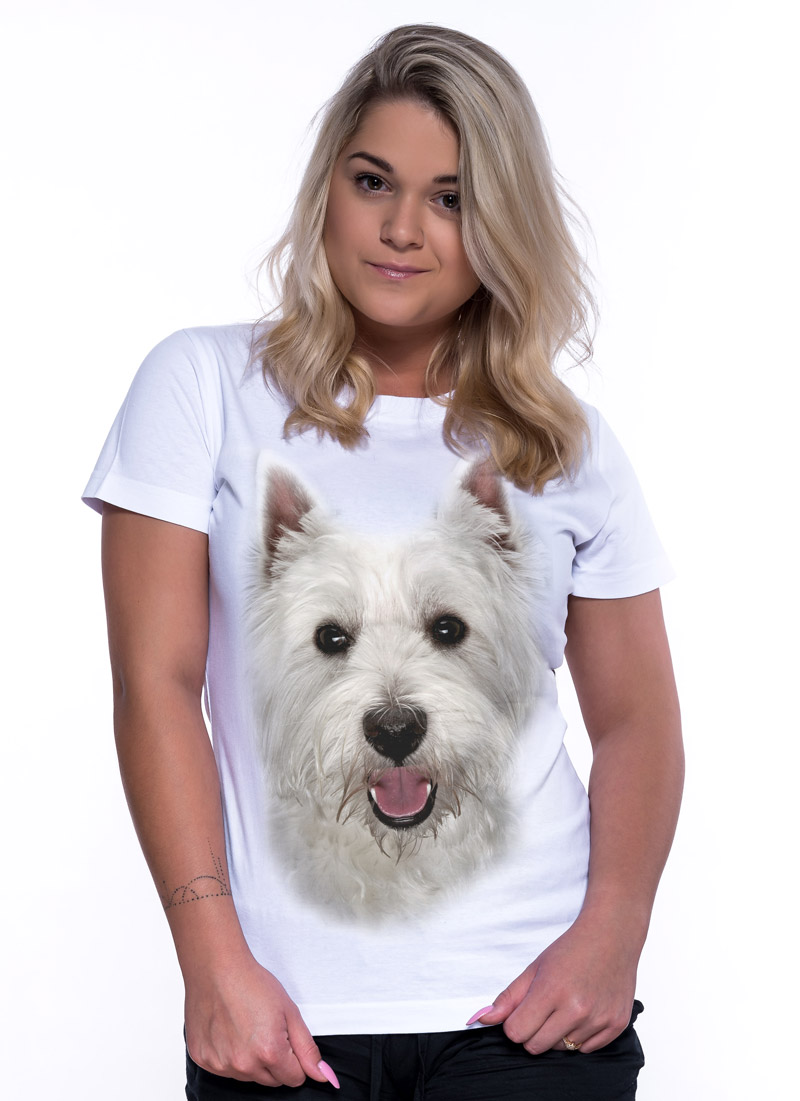 West highland white terrier - Tulzo