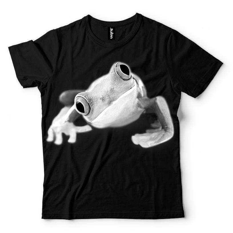 Żaba - Tulzo
