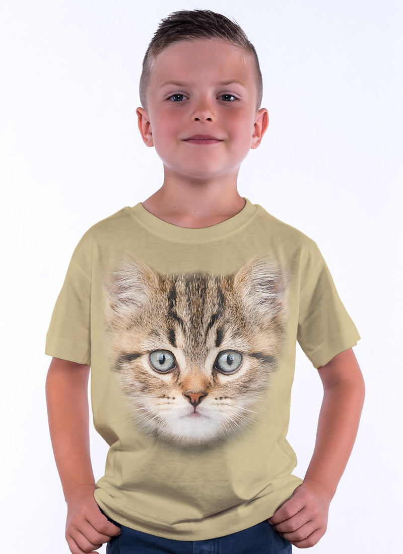 Kotek - Tulzo