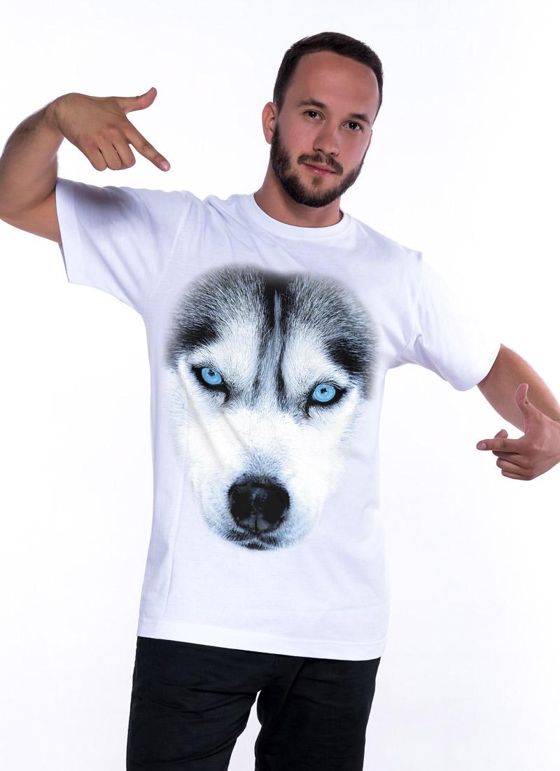 Husky - Tulzo