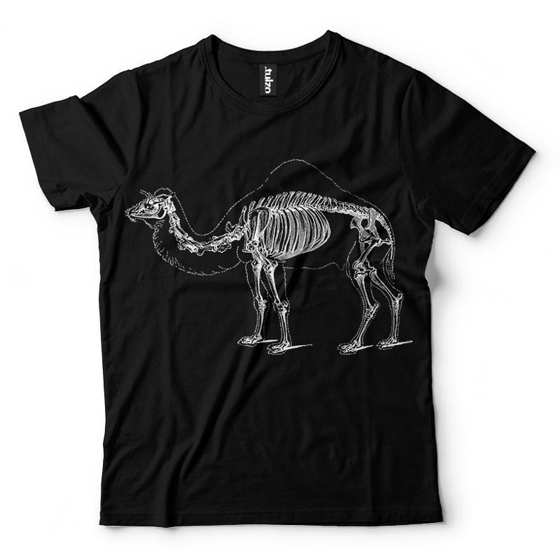 Wielbłąd - Tulzo