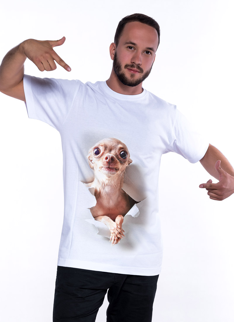 aaa067a2156c Chihuahua
