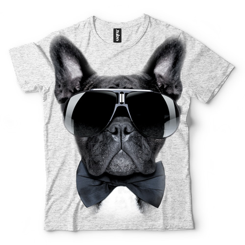 Buldog francuski w okularach - Tulzo