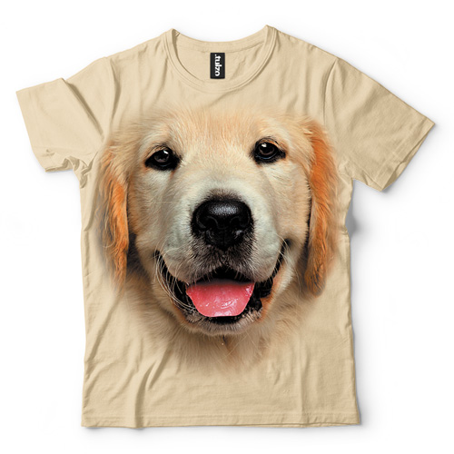 Golden Retriever - Tulzo
