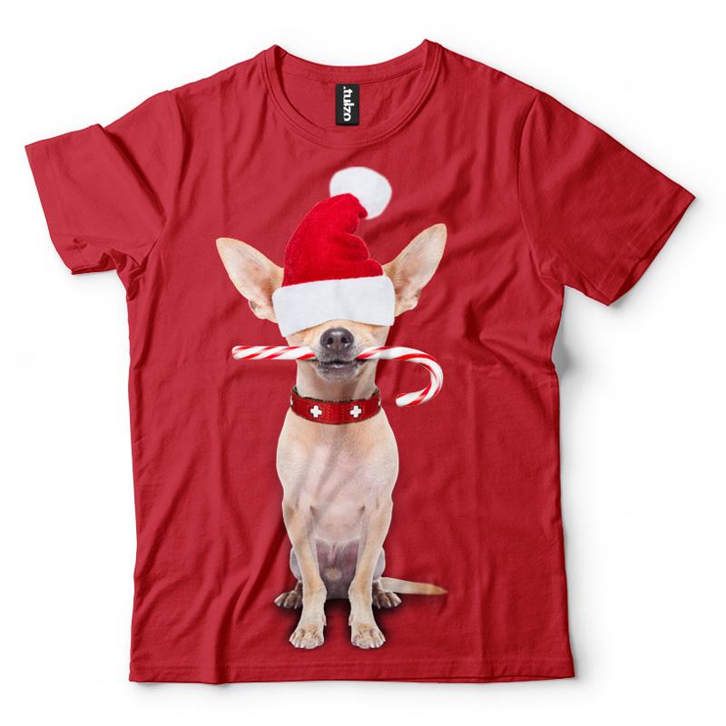 Chihuahua - Święty Mikołaj - Tulzo