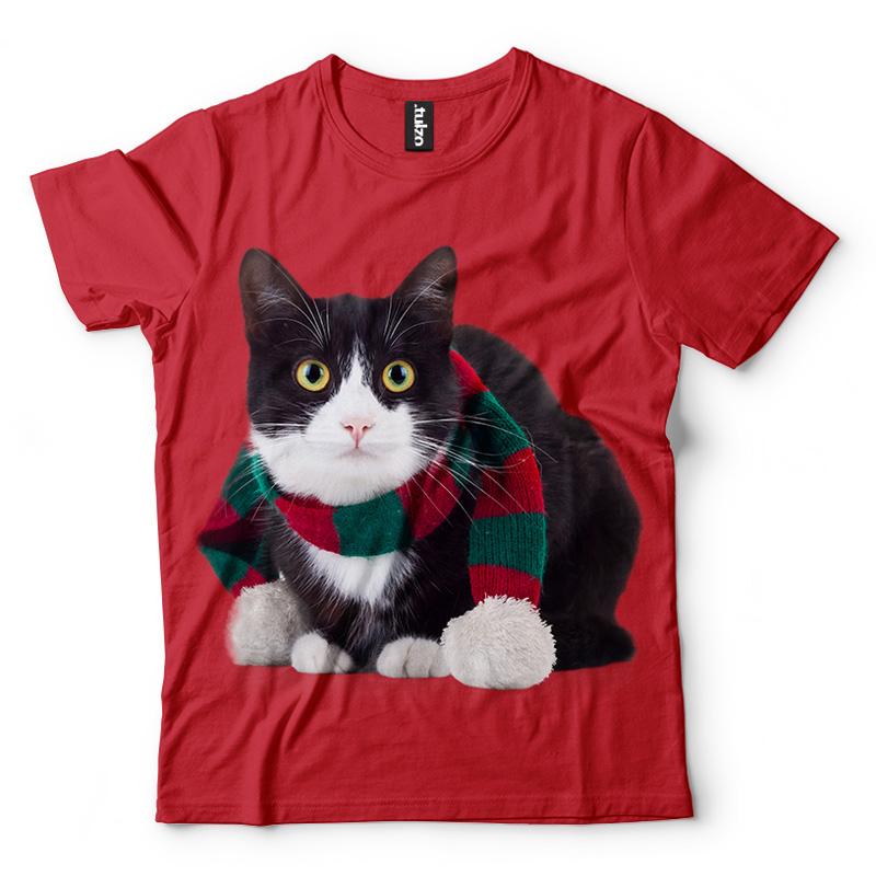 Kot w szaliku - Tulzo