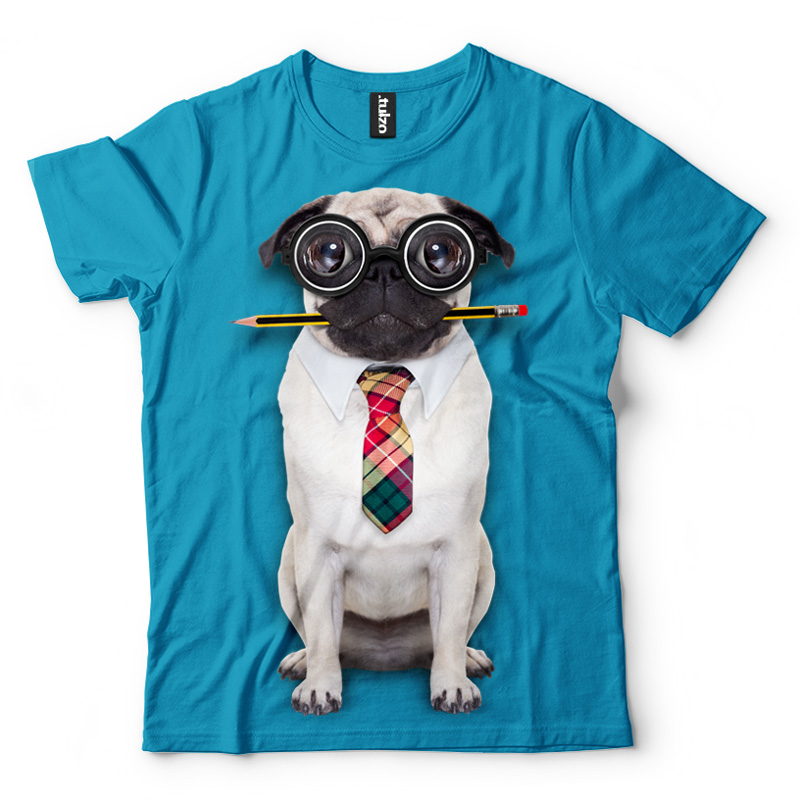 Pies z ołówkiem - Tulzo