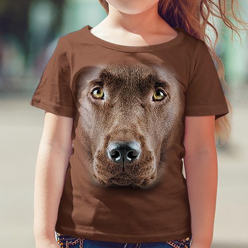 Labrador Czekoladowy - Tulzo