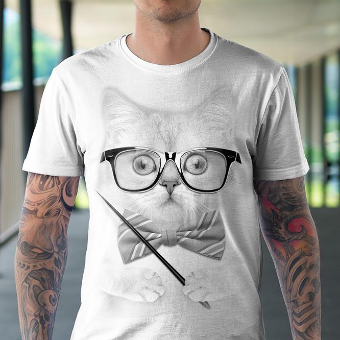 Kot Nauczyciel - Tulzo