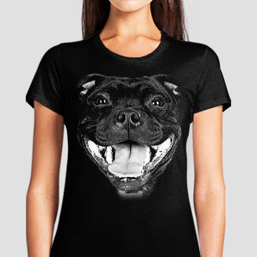 Stafford Bull Terrier - Tulzo