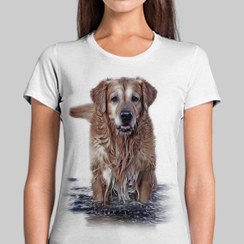 Malowany Labrador - Tulzo
