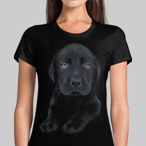 Pies Labrador Czarny Szczeniak - Tulzo