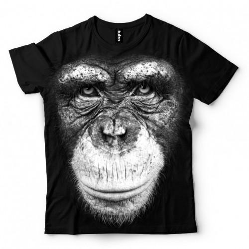 Koszulka Basic z Szympansem - Tulzo