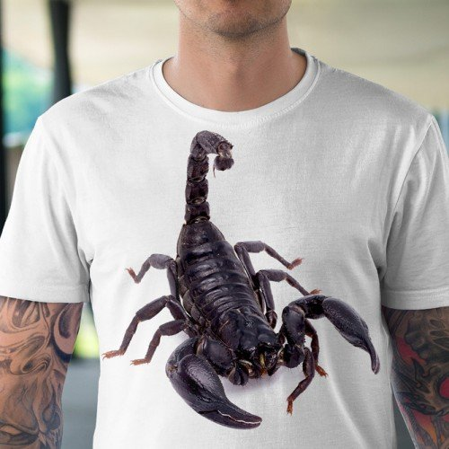 Koszulka Skorpion - Koszulki i bluzy 3D, T-shirty, tshirty, koszulki 3D z nadrukiem, koszulki damskie, koszulki męskie, koszulka, koszulki - Tulzo