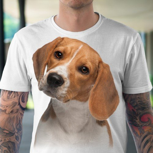 Koszulka Szczeniak Beagle - Koszulki i bluzy 3D, T-shirty, tshirty, koszulki 3D z nadrukiem, koszulki damskie, koszulki męskie, koszulka, koszulki - Tulzo