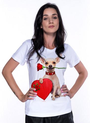 Love Chihuahua - Tulzo