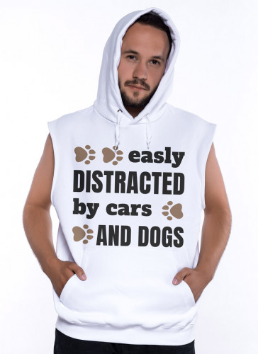 Distracted by Cars and Dogs - Tulzo