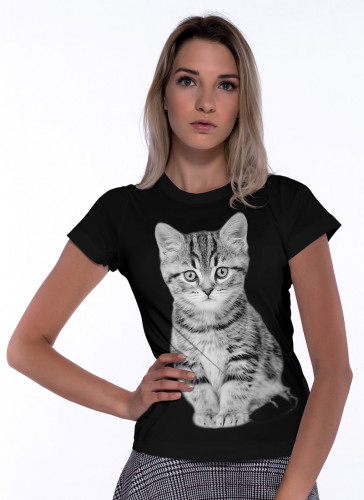 Mały Kotek - Tulzo