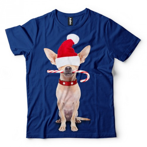 5a1fa9a1fbff Chihuahua - Święty Mikołaj