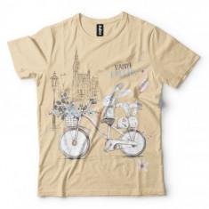 Królik na rowerze - Tulzo