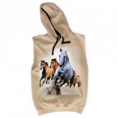 Konie - Tulzo
